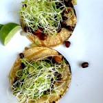 David's Black Bean Tacos - an Ageless Diet™ Recipe
